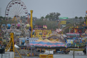 Best Of The 2014 Florida State Fair Food Rides Armbands Cbs