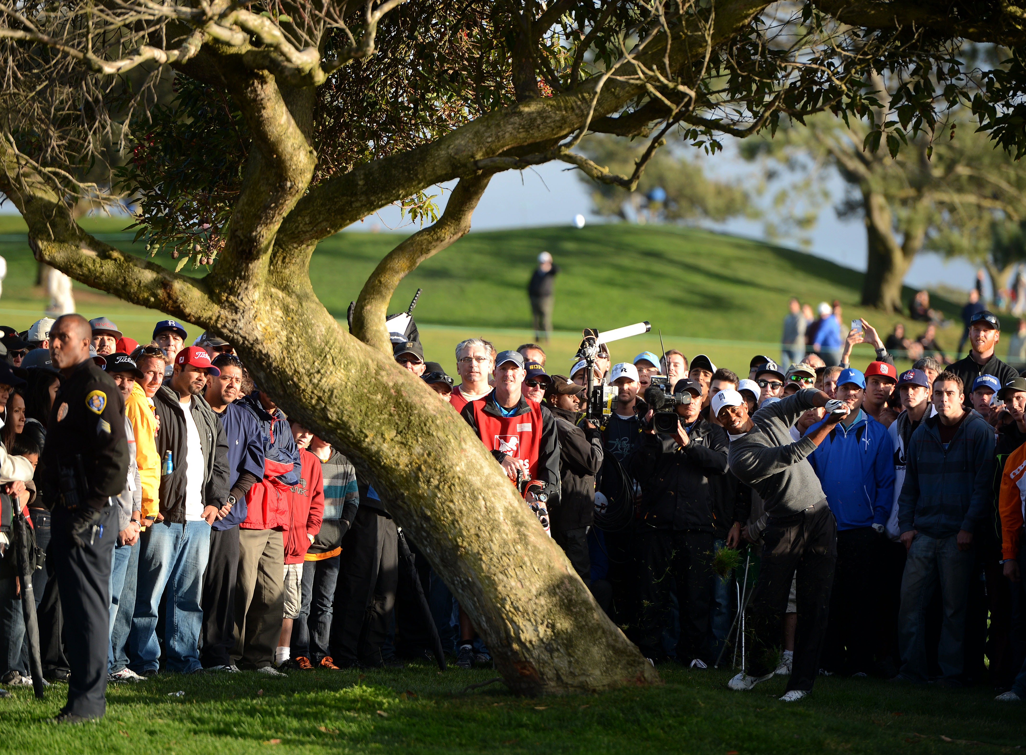 Tiger Woods bends a shot around a tree on the 4th hole during the Final Round at the Farmers Insurance Open at Torrey Pines. (Photo by Donald Miralle/Getty Images)