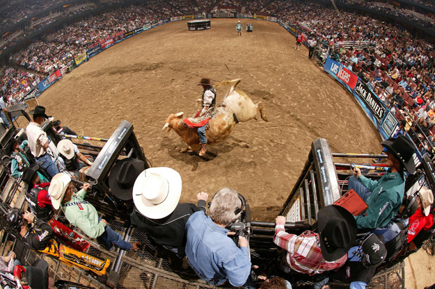 ANAHEIM, CA - FEBRUARY 11:  Ryan McConnell attempts to ride a bull during the final of the PBR Amp'd Mobile Invitational in the 2007 Professional Bull Riders Built Ford Tough Series, at the Honda Center on January 11, 2007 in Anaheim, California.