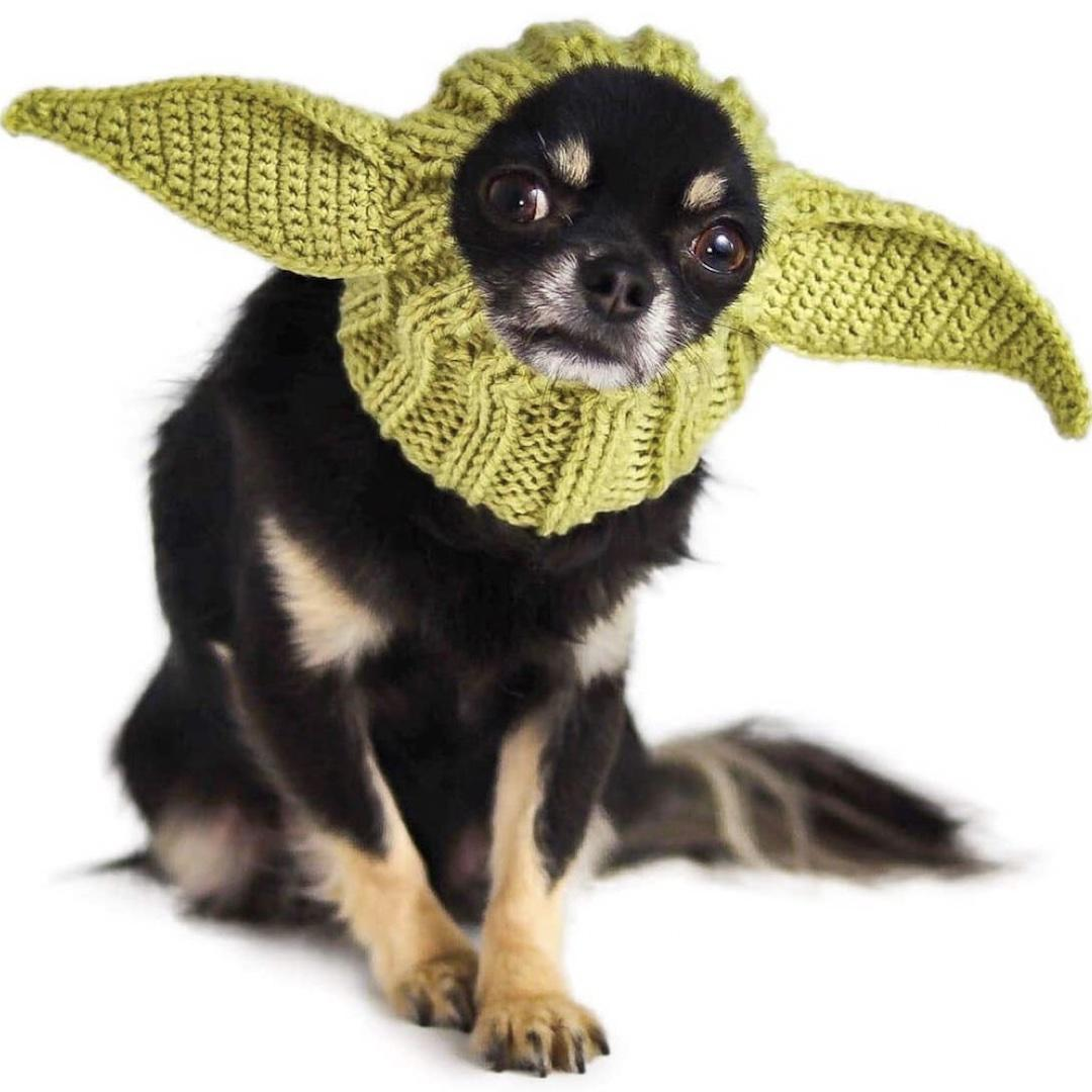 Knit Baby Yoda hood for dogs